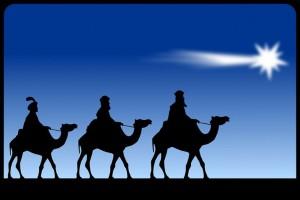 Star-of-Bethlehem