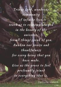 Laudato Si prayer excerpt